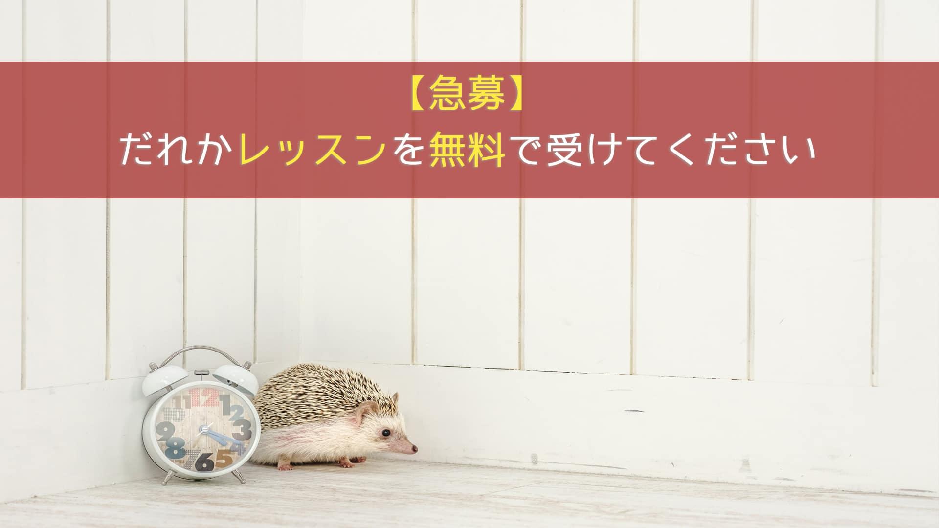 【急募】5/18(土) 12:00~13:00にレッスンを無料で受けてくれる方
